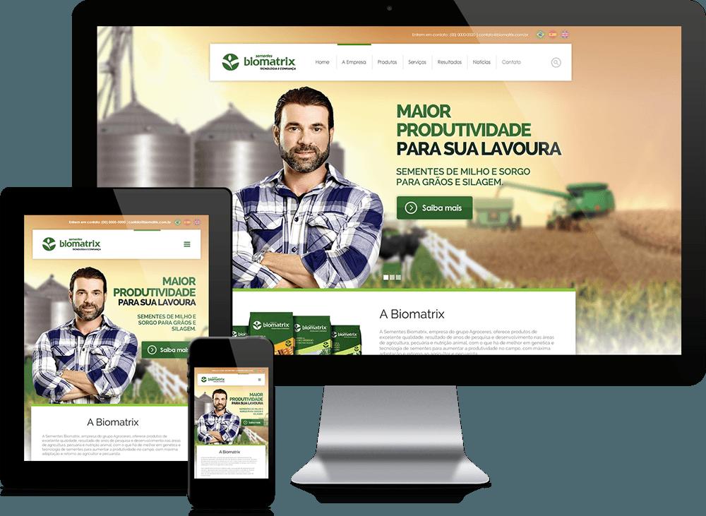 Criação de site Wordpress em Campinas